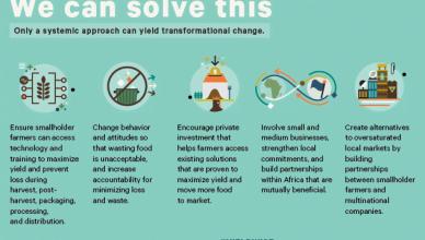 Cassava Innovation Challenge