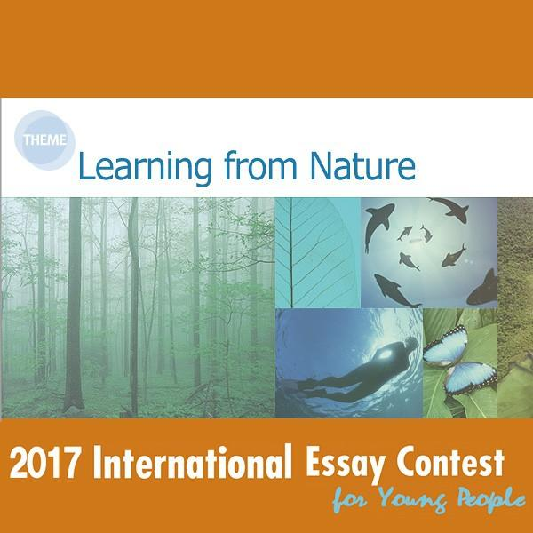 International Essay Contest for Young People
