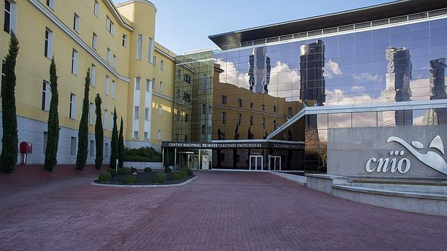 The Spanish National Cancer Research Centre under graduate summer programme