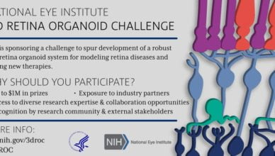 NEI 3-D Retina Organoid Challenge (3-D ROC)