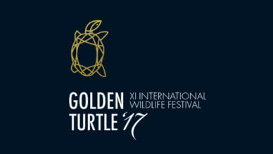 Golden Turtle Wildlife Art & Photography Competition