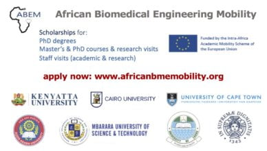 ABEM Biomedical Engineering Scholarships for African Postgraduate Students & Academics 2018