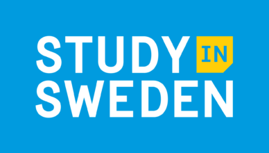 Swedish Institute Visby Programme Scholarships