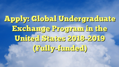 Global Undergraduate Exchange Program in the United States