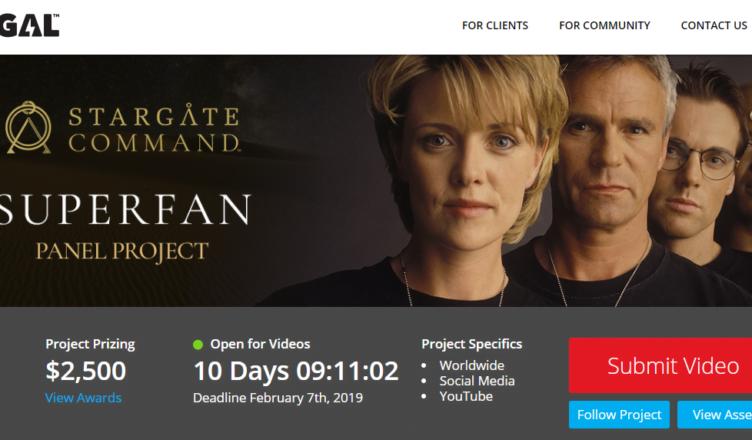 Stargate Superfan Panel Project