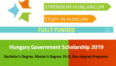 Hungarian Government Masters Scholarship