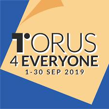 Torus for everyone challenge