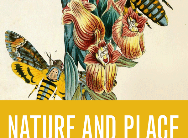 Nature and Place Poetry Competition 2020