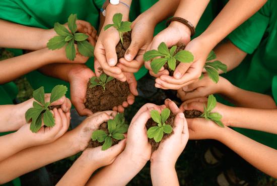 Environmental Insights Explorer Analytics Prediction Competition