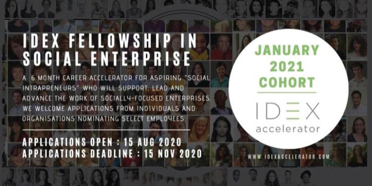 Call for Application IDEX Virtual Fellowship Program