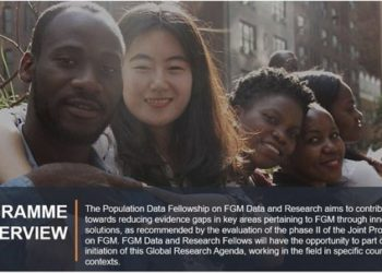 Un Volunteer Population Data Fellowships