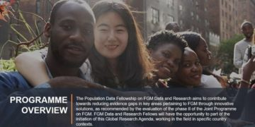 Un Volunteer Population Data Fellowships
