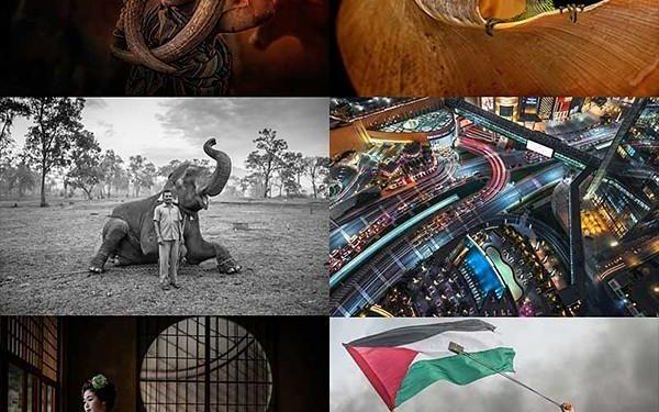 Xposure International Photography & Film Awards