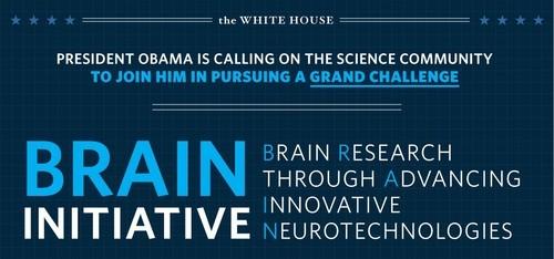Brain Initiative Challenge