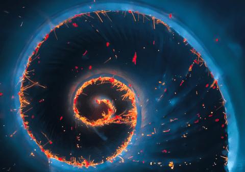 Olympus Image of the Year Award 2020