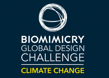 Global Biomimicry Design Challenge