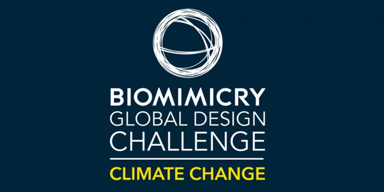 Global Biomimicry Design Challenge