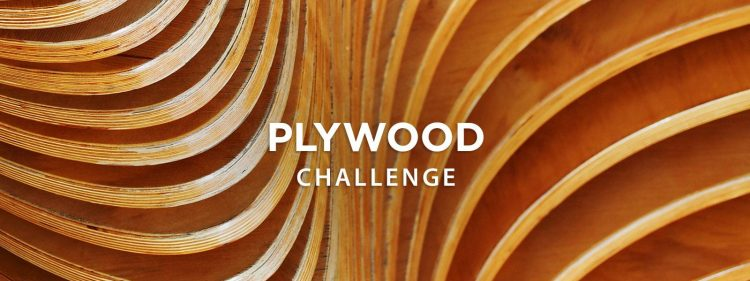Instructables Plywood Challenge