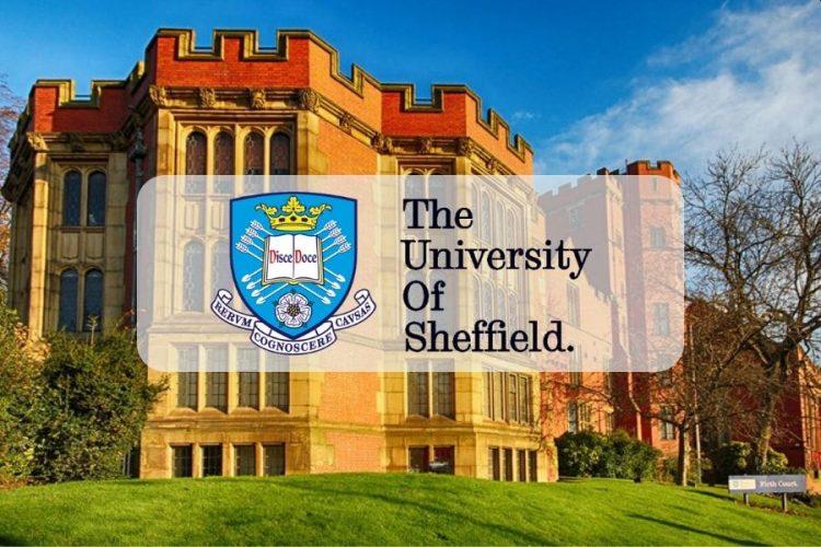 The University Of Sheffield International Scholarships