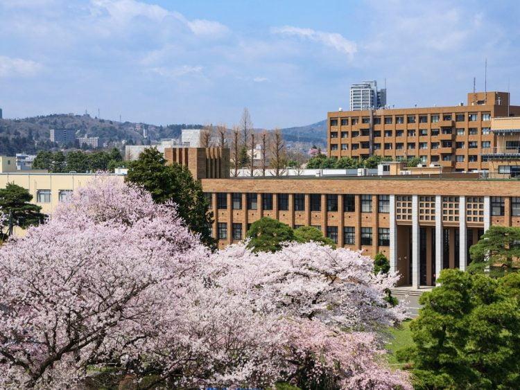 Tohoku University International Scholarships