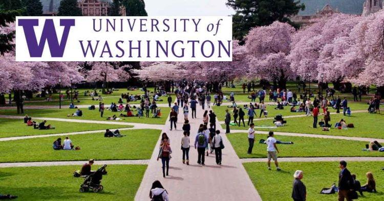 University of Washington Undergraduate Scholarships