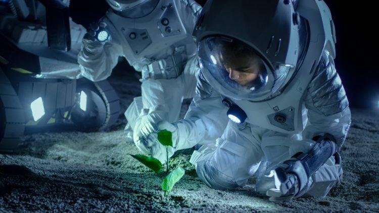 Nasa Deep Space Food Challenge Phase 1