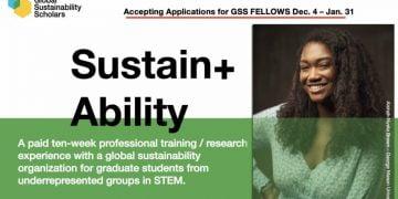 The Gss Fellowship Program