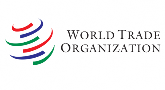 WTO 2021 Essay Award for Young Economists