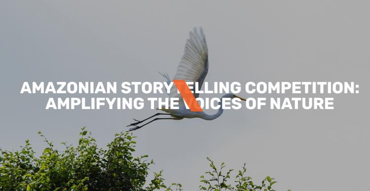 Amazonian Storytelling Competition