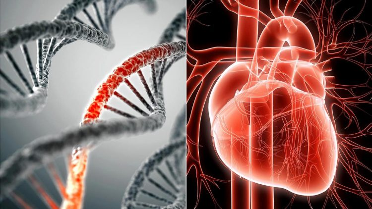 Increasing Awareness and Testing of a Genetic Risk Factor for Cardiovascular Disease Competition