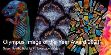 Olympus Image of the Year Award 2021