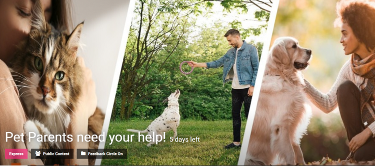 Pet Parents need your help Innovation Competition